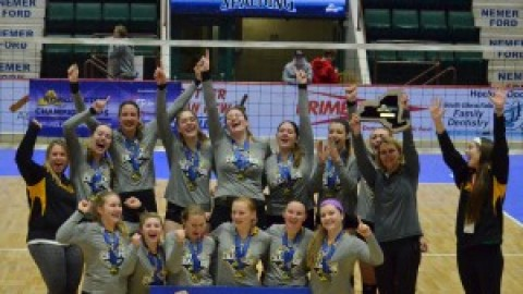 HF-L Girls Volleyball Brings Home State Title!