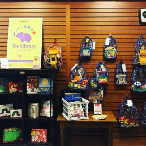 Rochester Toy Library's Toys On Display and Available for Loan at Mendon Library