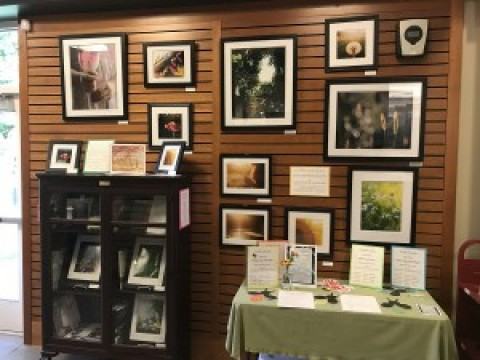 """A Luminous Enchantment"" Photo Exhibit at Mendon Public Library"