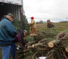 Stokoe Farms Sends Trees for Troops