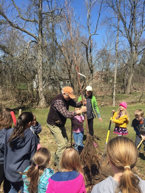 Girl Scouts plant tree to recognize Arbor Day