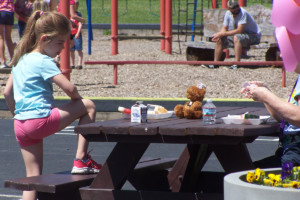 Lima Primary School students celebrate with Teddy Bear Picnic