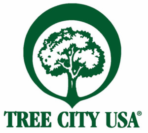 Village of Scottsville Awarded DEC Grant to Update Tree Inventory