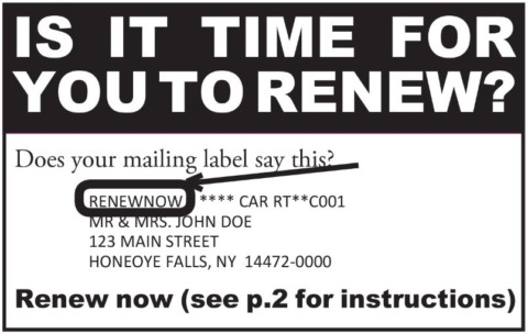 Is it Time for You to Renew?