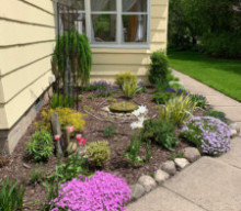 Scottsville Garden Highlight: Kathleen's Backyard Zen