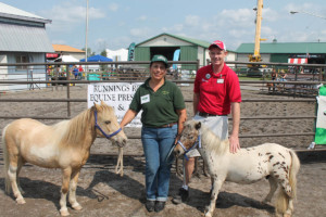 Popular Begin Again Horse Rescue Group Returning For 2019 Empire Farm Days