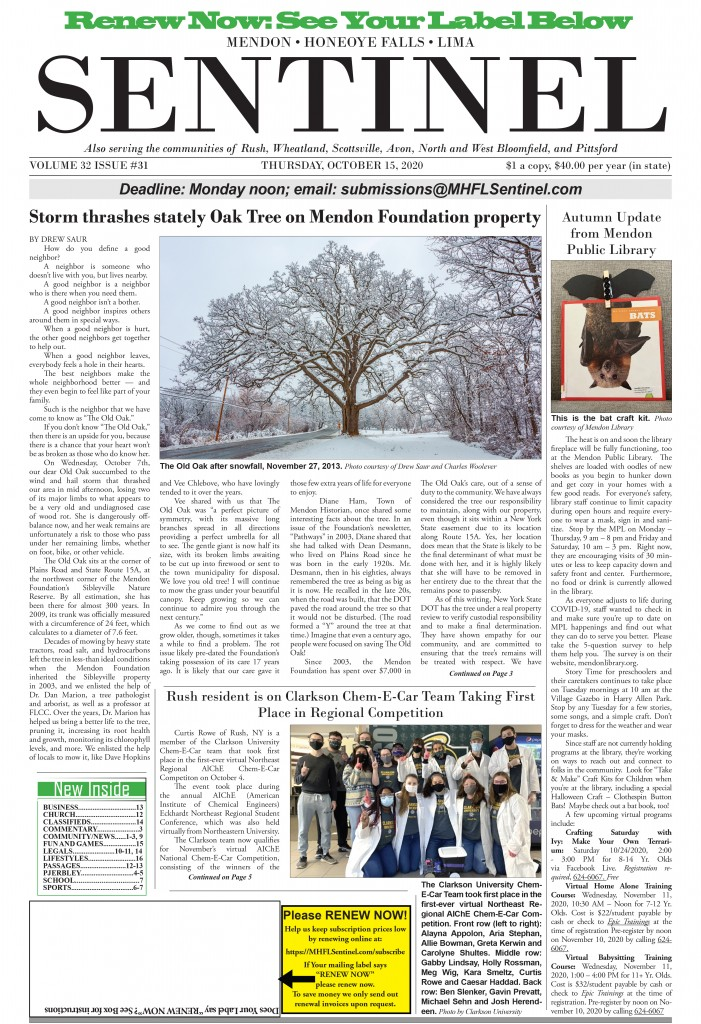 October 15, 2020 Issue of <em>The Sentinel</em>