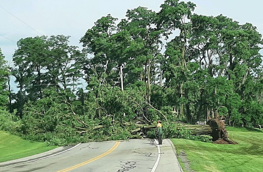 Storm damage Canfield-Rd-with-People