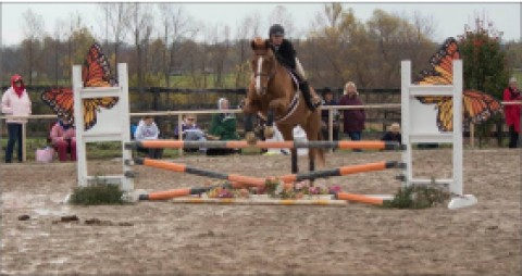 Dettman goes for horseback riding's Cacchione Cup